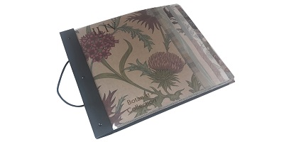ILIV Botanist Pattern Book